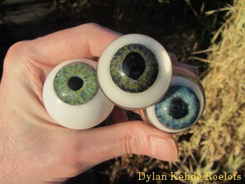 glass eyes eyeballs taxidermy special effects