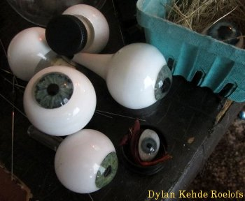 glass taxidermy special effects eyes eyeballs